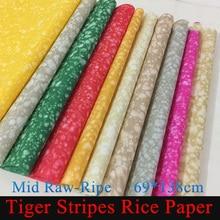Новая Тигровая полоска рисовая бумага Красочная картина Xuan бумага для каллиграфии художественная школьная поставка