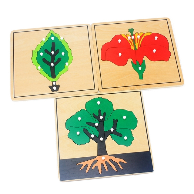 Baby Montessori Materials Wooden Puzzles Educational Toys Plant Growth Panel Wood Toy Learning Tangram/Jigsaw Toddlers Preschool 2