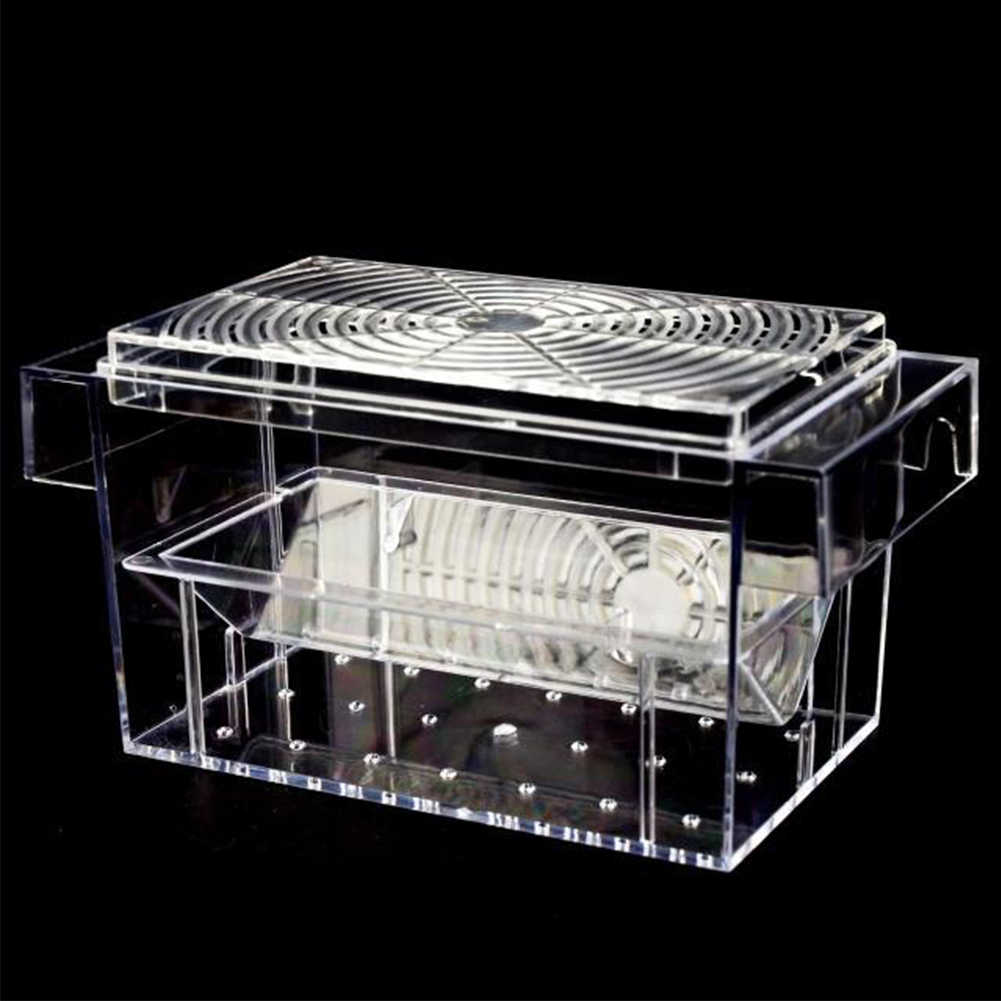 Fish Breeding Box Aquarium Hatchery Double-deck Cage Trap Floating Isolation Tank Fry Mini House Guppies Incubator Transparent