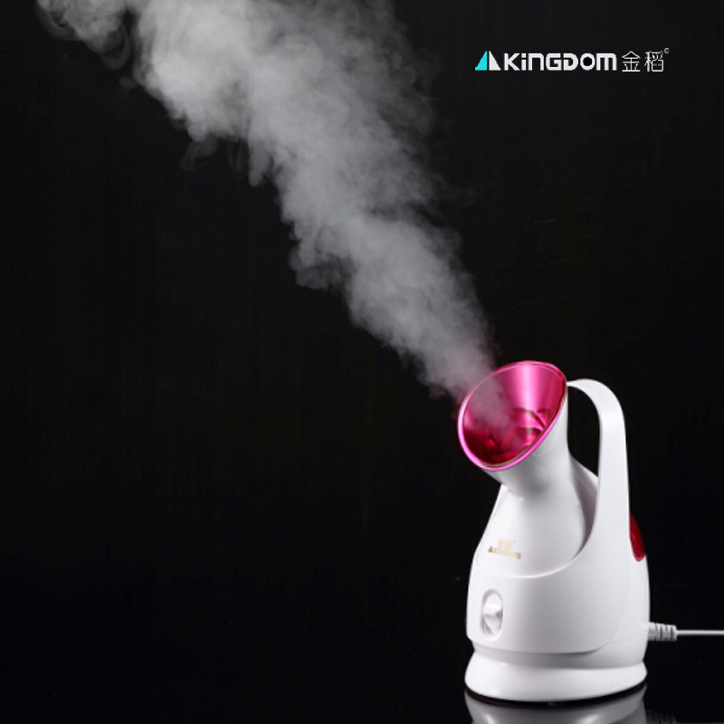 Facial care unit Ionic Hot Mist Facial Steamer Nano Ionic Steamer Ozone facial sterilization steaming skin фен elchim 3900 healthy ionic red 03073 07