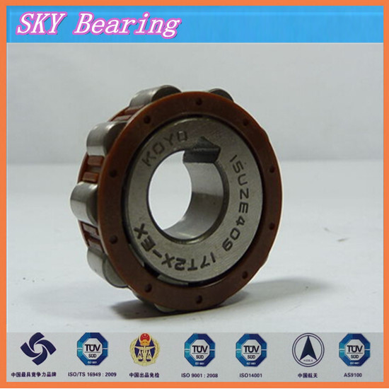 double row eccentric bearing 22UZ21135 T2X brass cage double row eccentric bearing rn205 eccentric collar