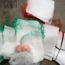 10 Pcs 30*20cm Garden Insect Barrier Net Protect Bags Plant Seed Carrier Bag, Mosquito Bug Insect Barrier Bird Net
