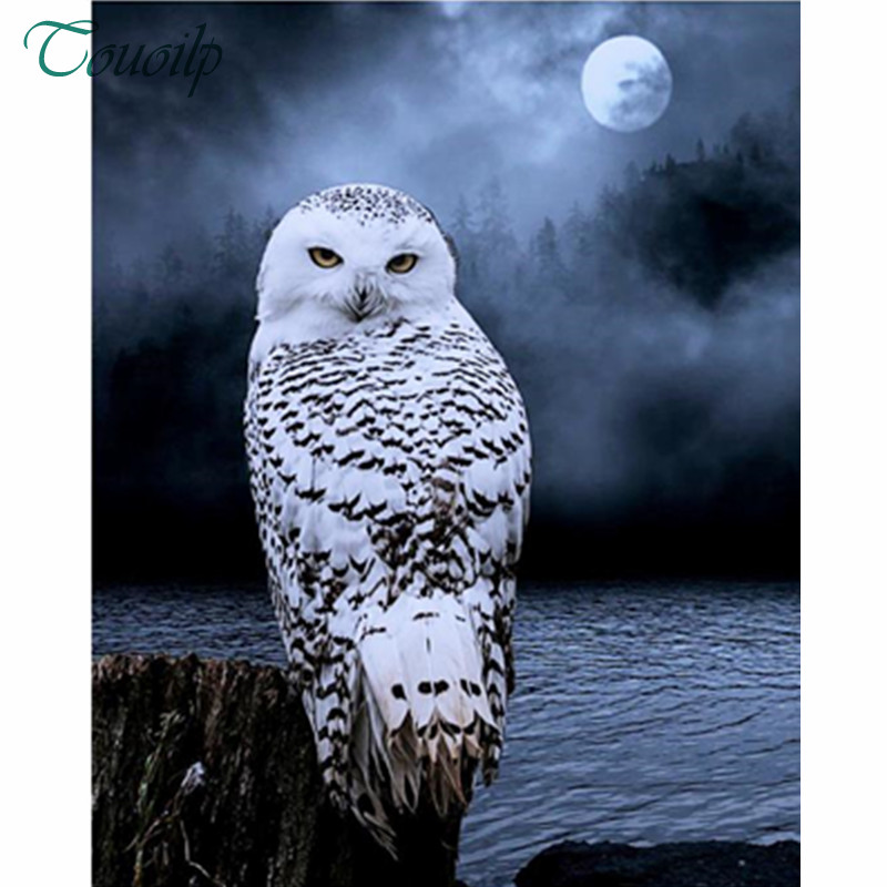Animal Owl Diamond Painting Black And White Design Embroidery Pattern Decoration