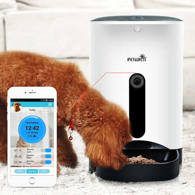 dispensers petsafe pet dog water desktop automatic bowls feeders food meal petsmart placeholder and pdp feeder
