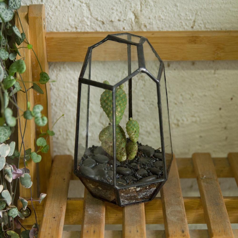 Modern Onregelmatig Glas Geometrisch Terrarium Box Tafelblad Vetplant - Huisdecoratie - Foto 3