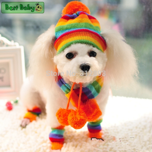 Winter Pet Puppy Accessories For Dogs Knitted Striped Hats Scarf Socks  Little Small Big Animals Yorkshire Chihuahua Cat Products 409a2687f036