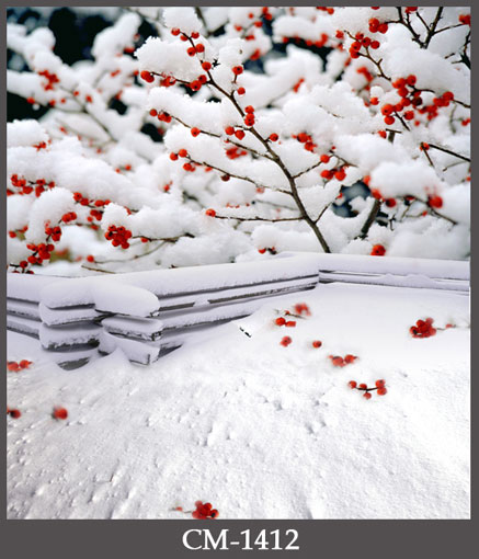 Snow on plum blossom photography background sunset photo backdrops for photo studio photographic background fotografia props nokia n73 plum в москве