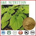 GMP Certified Manufacturer Supply Natural Kava Root Extract