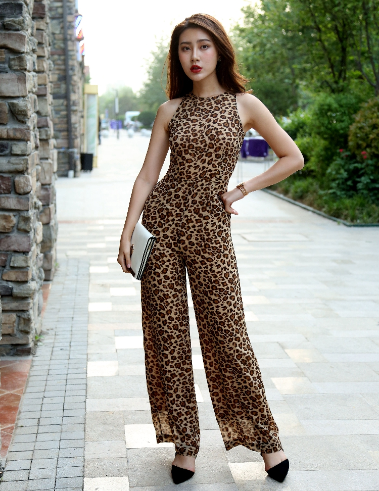 2018 Summer Women Jumpsuit Party Overalls Rompers Chiffon O-neck Elegant Leopard Print Full Length Sexy Bodysuit S M L XL