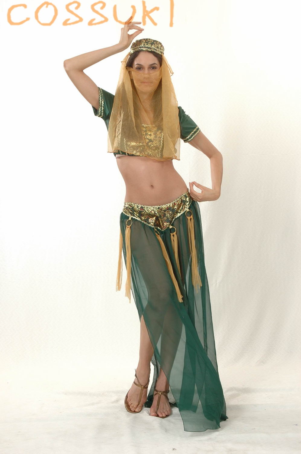 free pp sexy costumes sexy erotic lingerie arabic belly dance sexy
