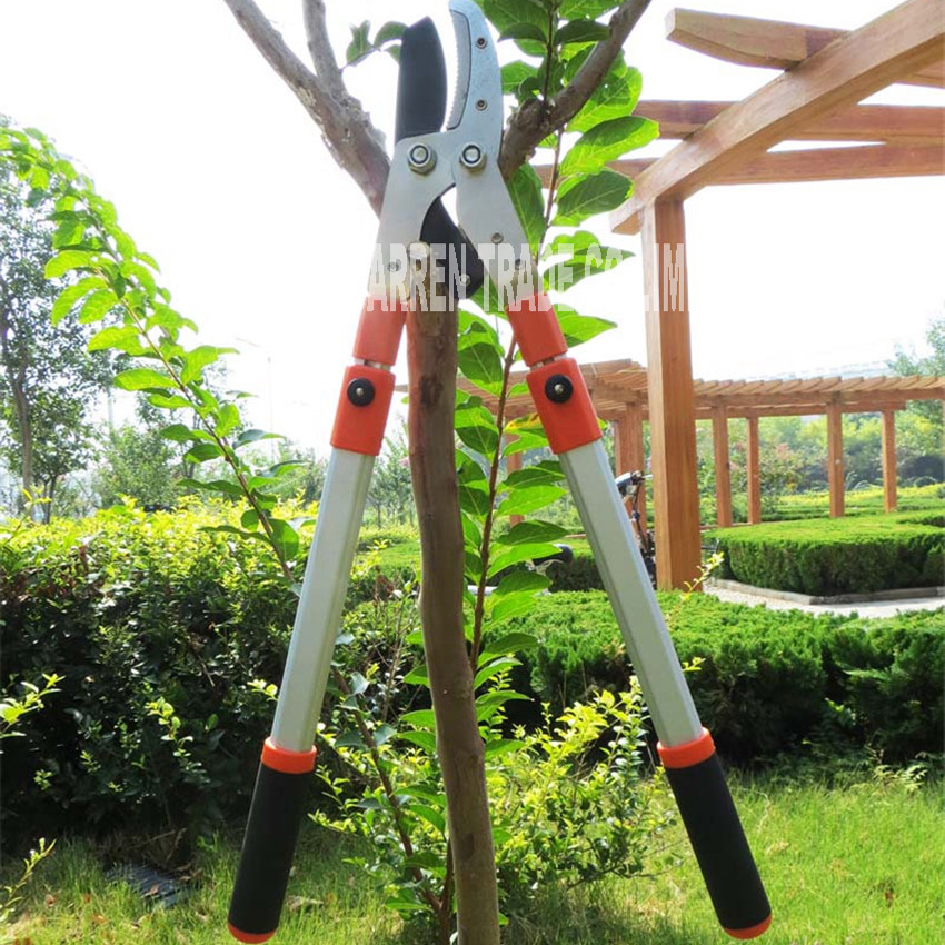 NEW HOT Rough pruning high branches pruning shears Branches of fruit trees  green garden scissors stretch shears garden tools|Pruning Tools| |  - title=