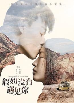 《假如没有遇见你》2018年中国大陆剧情,爱情电视剧在线观看