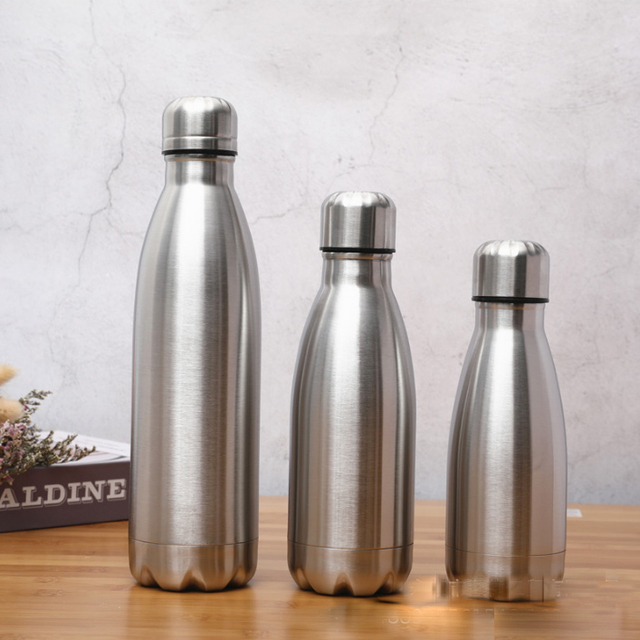 Planet Friendly Portable Stainless Steel Water Bottle