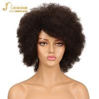 Joedir Brazilian Human Hair Wig Kinky Curly Hair Bulk Afro Kinky Curly Human Hair Kinky Wig Remy Short Bob Curly Wigs Human Hair
