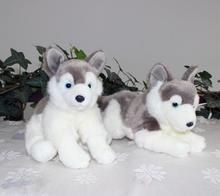 Super Kawaii Plush  Husky Dog Doll Baby Toy Cute Stuffed Animaml Gift Toy Store