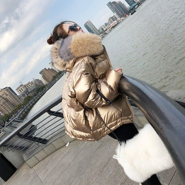 Зимняя куртка женская 2018 новый стиль Европейская зима большой натуральный мех воротник толстый женский высокий уличный короткий пуховик пальто женские парки