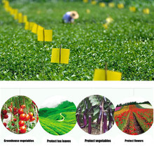 5 Pcs Two-sided Glue Stickers Yellow Hang Fly Trap Catchers Bug Insect Killer Pest Control For Balcony Garden Livestock Farm