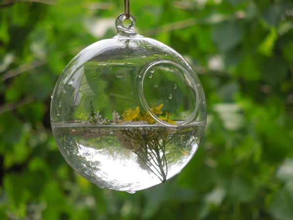 Free Shipping Hanging Glass Ball Terrarium With Small Open 8cm 10cm