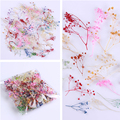 10Pcs/Box Dried Flower Cornflower Pretty Preserved Flower 3D Manicure Nail Art Decoration