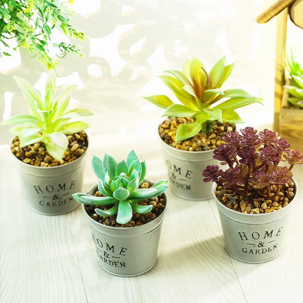 Fridge Magnets Potted Artificial Green succulent plants Bonsai set fake Flower vase Souvenir Blackboard Magnetic in Artificial Dried Flowers from Home Garden