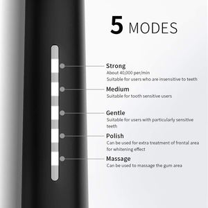 Image 2 - Ultra Sonic Electric Toothbrush SG 958 SEAGO 5 Mode 2 Min Smart Timer Waterproof With 3 Replaceable Brush Heads Teeth Whitening