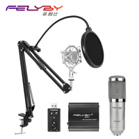 Felyby Профессиональный BM 800 конденсаторный микрофон студия звукозаписи вещания с подставкой 48 В фантомное питание для портативных ПК