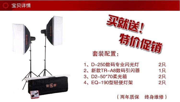 JINBEI Professional Studio Flash 250W D-250 Kit 1, Photographic Flash Kit, Strobe Kit, Photographic Equipment photography CP