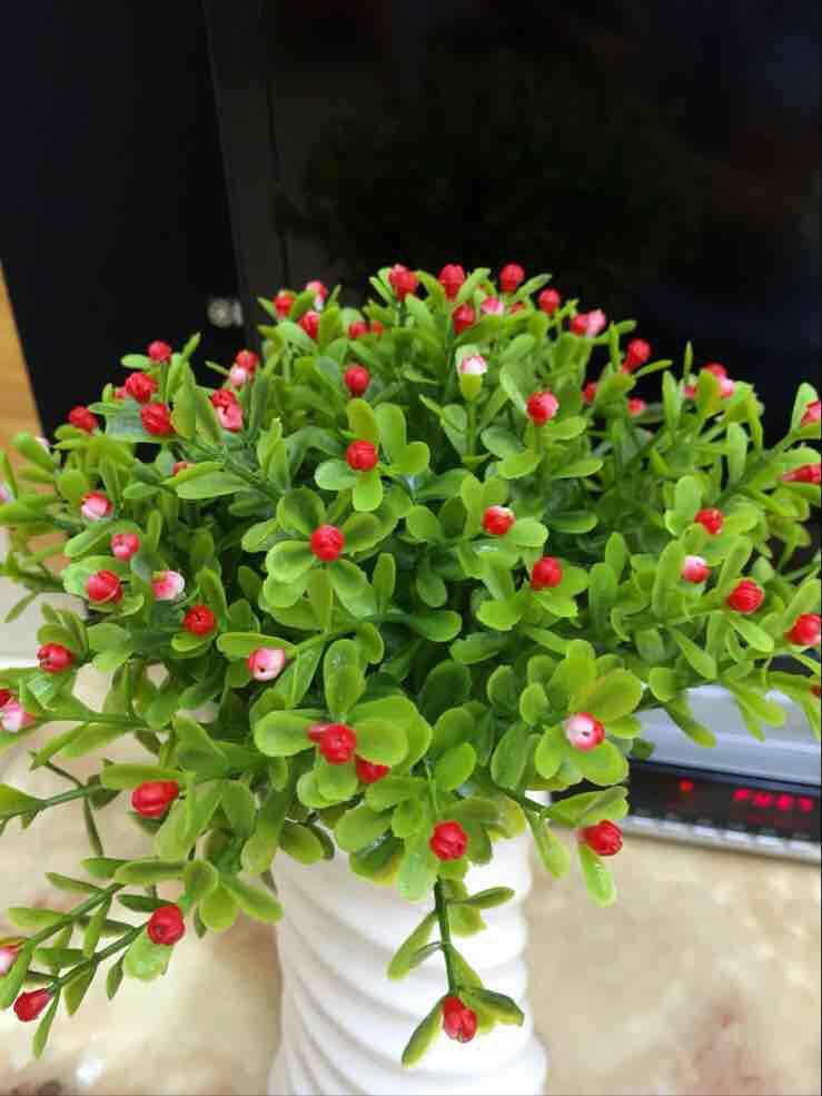 unids orqudea grano seco flor seca de plstico verde planta plantas de agua home tv