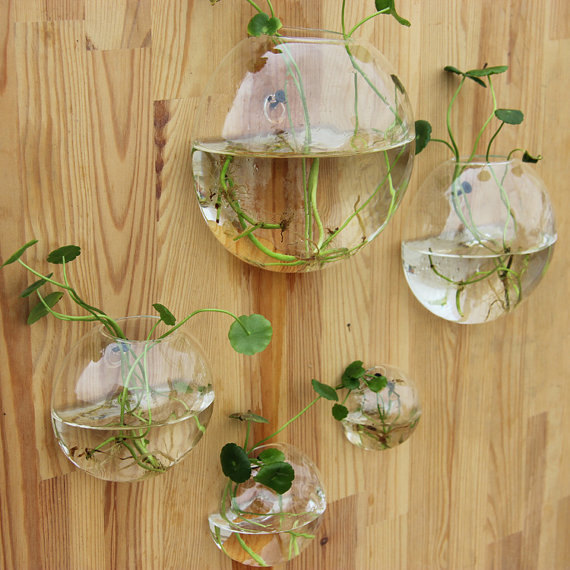 Set Of 5 Hand Blown Glass Wall Vase Bubble Wall Terrarium Indoor