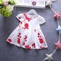 Girl dress bebê 0-1y bebê recém-nascido verão bordado flor de algodão dress bebê 1 ano de aniversário dress infantil princess dress