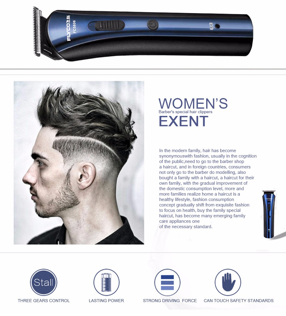 Flyco NEW Professional Voltage(100-240V) Electric Razor 2 independent floating heads Full Body washable Electric shaver FS868 17