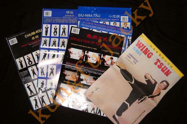 Ting Leung Wing Chun Kungfu Wall Map Set Wing Tsun Wooden Dummy