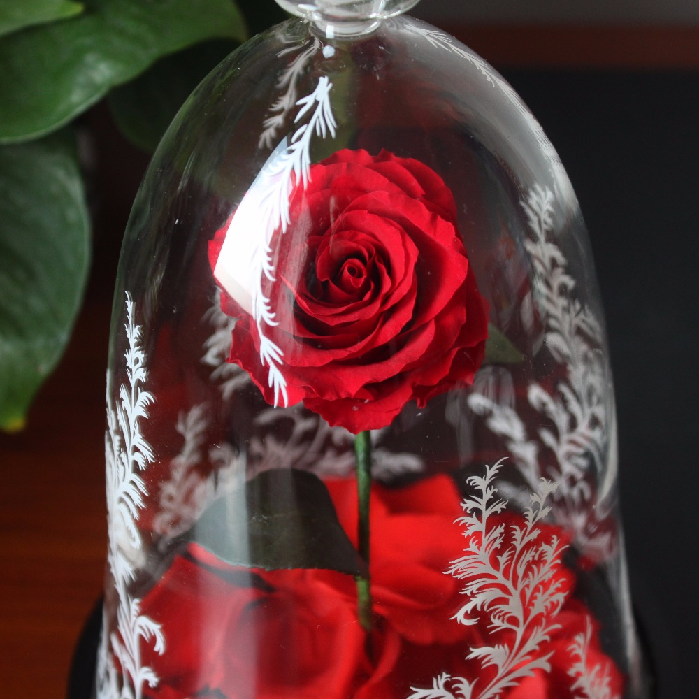 Beauty And The Beast Enchanted Rose Glass Cover Prop Eternal Flower