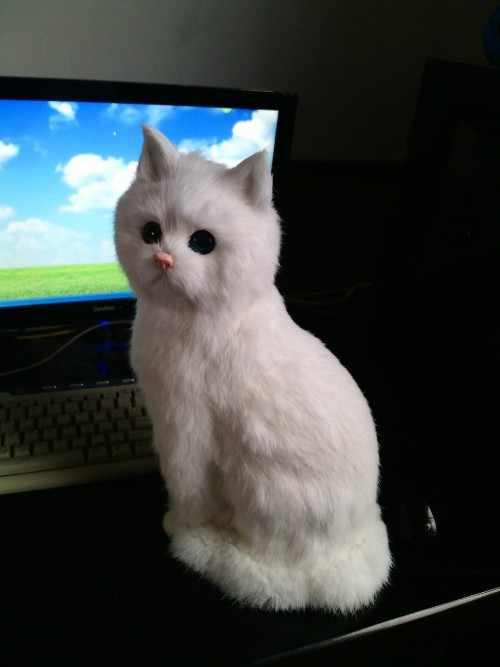 """מודל חתול לבן סימולציה פלסטיק & פרווה הגדול יושב a180 מתנת בובת חתול חמוד 35x15 ס""""מ"""