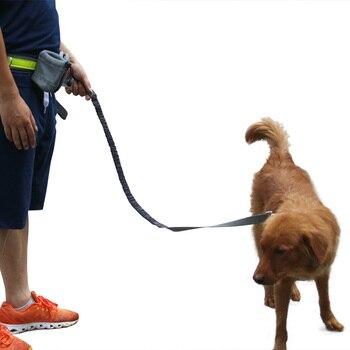 Vành Đai đàn hồi Chạy Dog Leash Chì Thể Thao Chạy Bộ Đi Bộ Vật Nuôi Cổ Áo Dây Tay Miễn Phí Eo Chó Phản Quang Leash Set Cho chó