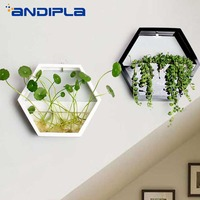 Simple Modern Hexagon Wall Vase Wall mounted Small Fish Pot Tabletop Succulent Plant Hydroponic Flower Pot Creative Home Decor