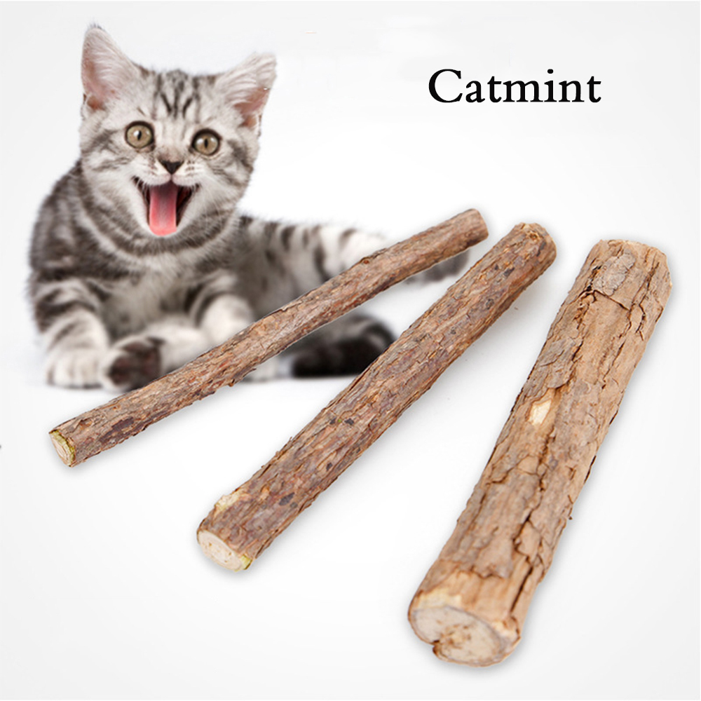 aliexpress com buy catnip sticks 4 pcs matatabi cat stick catnip