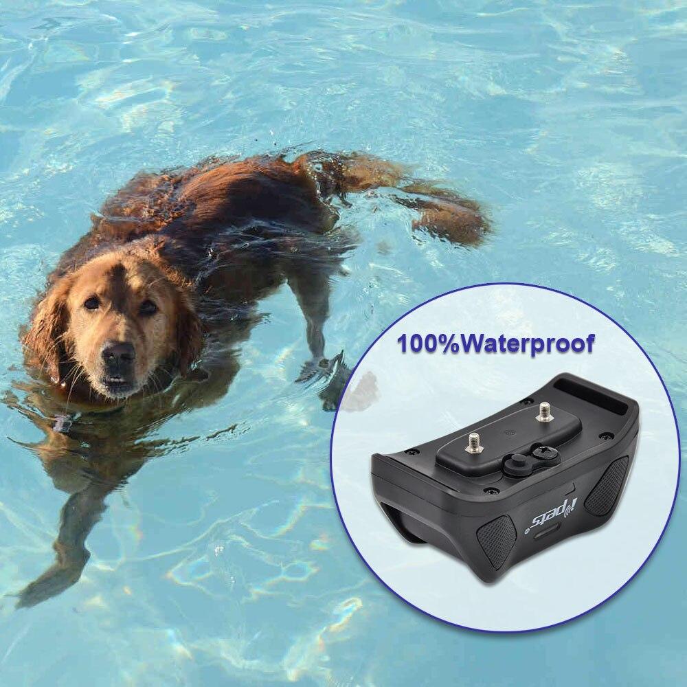 Ipets 617 1 Neue Wasserdichte haustier hund produkte blau hintergrundbeleuchtung LCD Display 800 M fern ausbildung kragen für hund-in Trainings-Halsbänder aus Heim und Garten bei  Gruppe 2