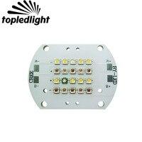 Topledlight Customize 2 Channel 60W Plant Grow Led Emitter Lamp Light 3000K 6500K 450NM 470NM 620NM