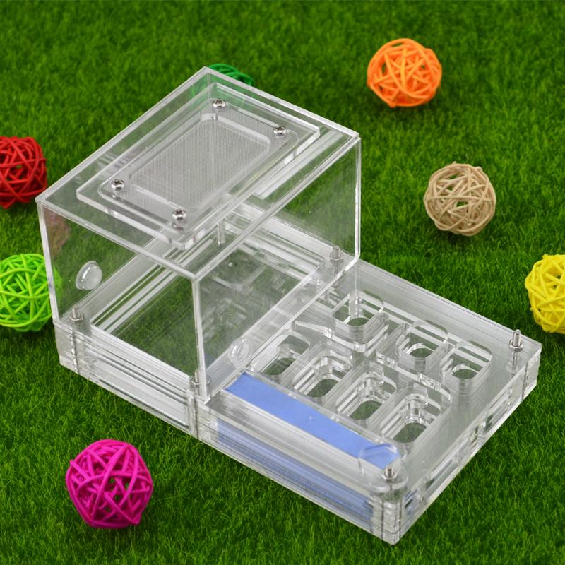 16*10*8.5cm moisture with feeding area ant nest ,ant farm acryl, insect ant nests villa new pet advanced mania for house ants
