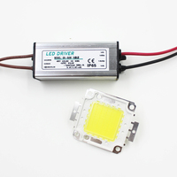 Real Full Watt 50W High Power COB LED Lamp Chips Bulb With LED Driver For DIY
