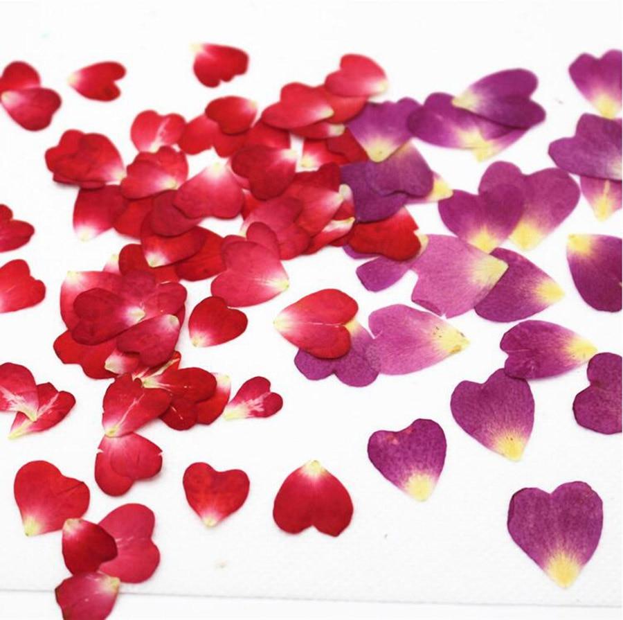 Нарисовать, открытки с лепестками роз