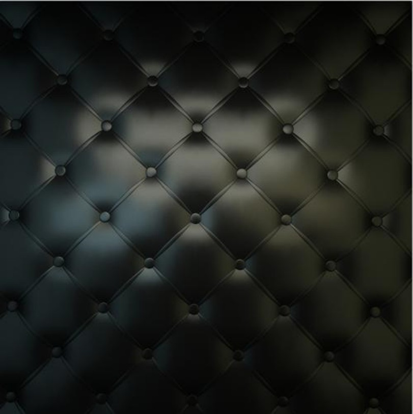 Black Tufted Headboard Sofa Backdrops Vinyl Cloth High