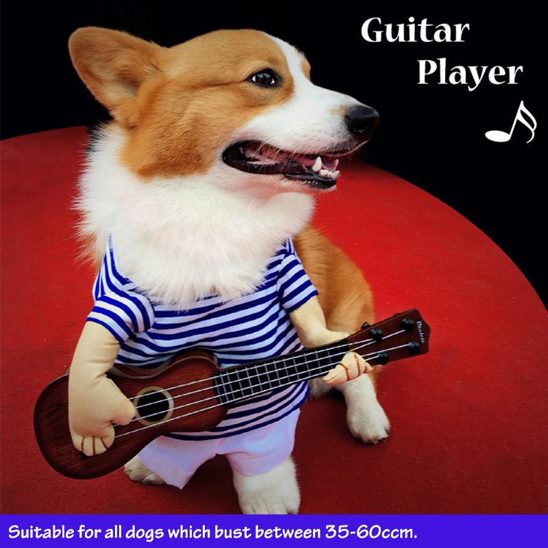 funny guitar player dog costume halloween