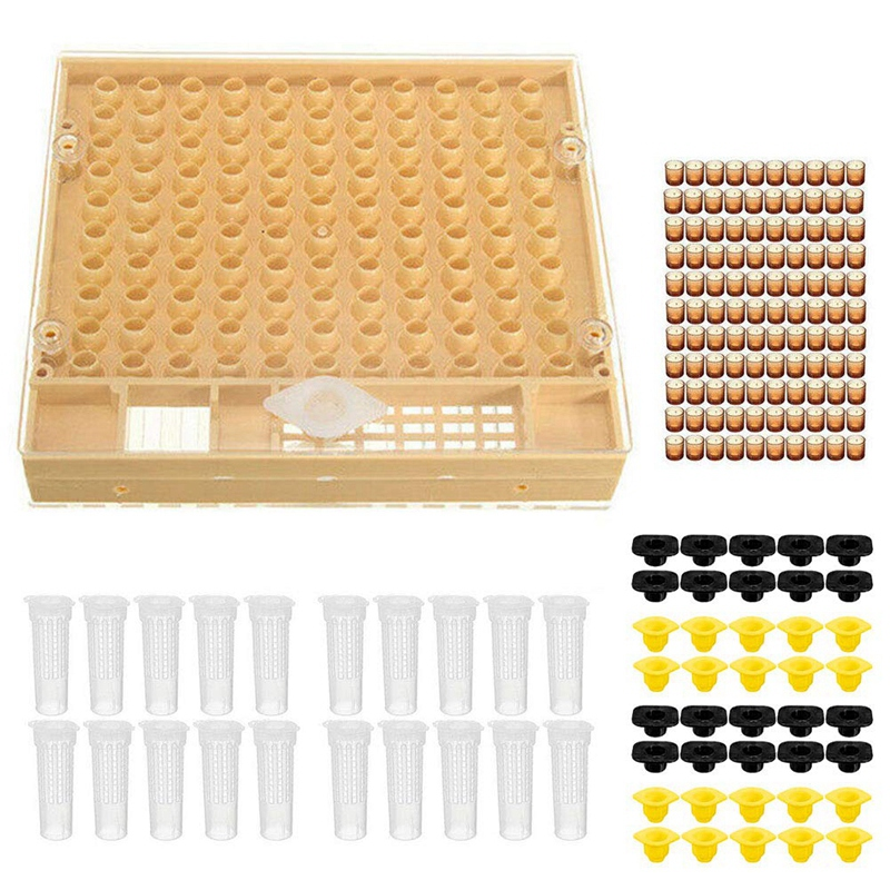 US Bee Non-toxic Beekeeping Tools Set Catcher Cage Queen Rearing Cultivating Box