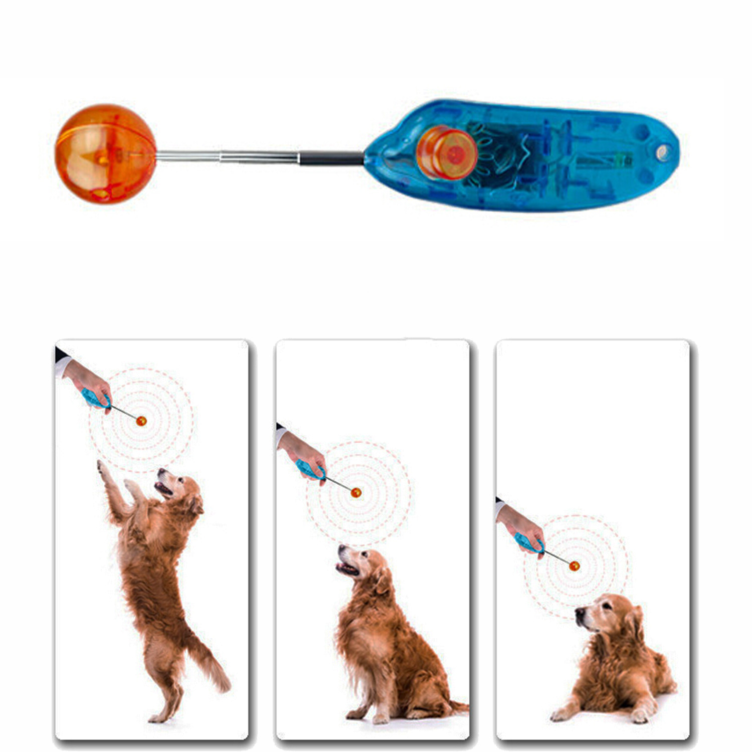 Behogar Funny Novelty Stretchable Design font b Pet b font Dog Cat Training Clicker Agility Clickers