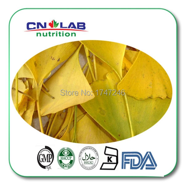 Natural High Quality Ginkgo Biloba Extract with 24% Flavones by HPLC Ginkgo Powder 300g free Shipping