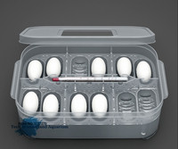 New Plastic 12 Holes Reptile Egg Incubation Tray With Thermometer Incubating Gecko Lizard Snake Eggs Incubation