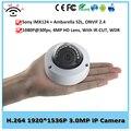 Камеры безопасности Новые Ambarella 3-мегапиксельной Ip-камеры Poe Видеонаблюдения Крытый Видеонаблюдения 1080 P Sonyimx124 + ambarella S2l Мпк