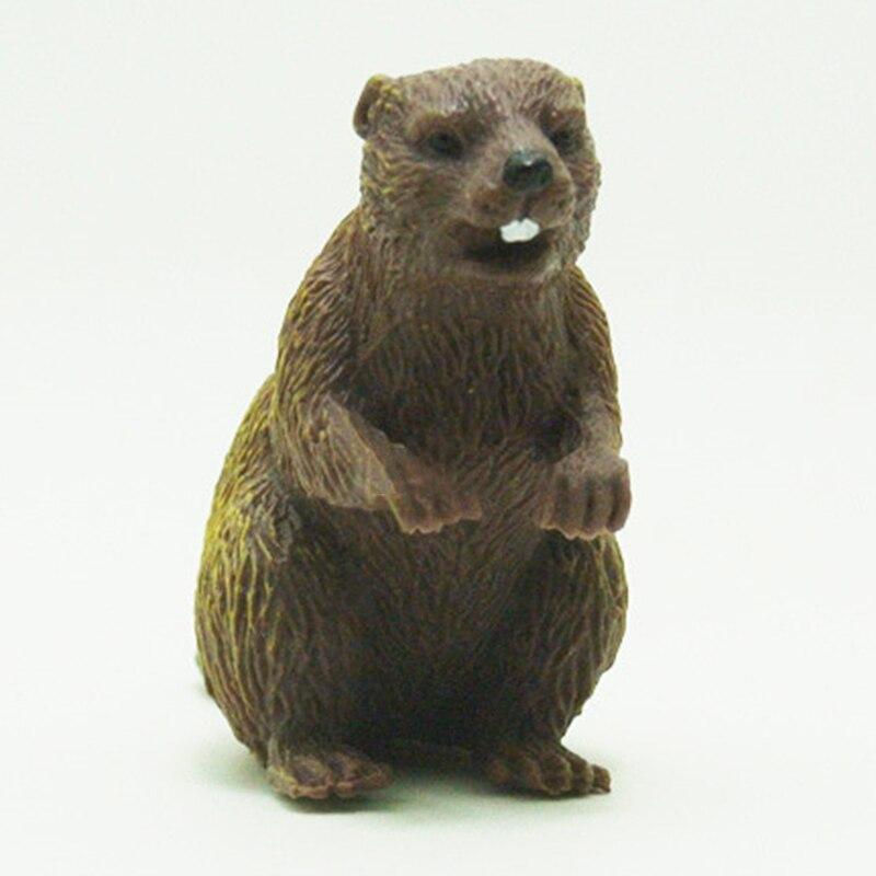 Gift Beaver model Animal Beaver Toy Figurine Decor Plastic Animal Model Kids Animal Beaver Model Hot in Biology from Toys Hobbies